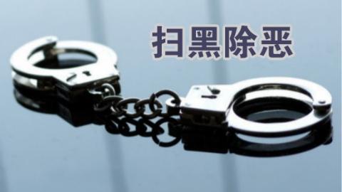 上海市检察院召开扫黑除恶领导小组专题会议 研究落实整改措施
