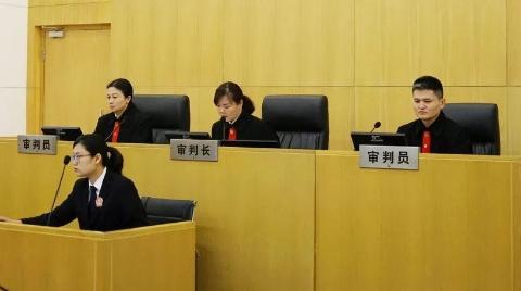"""""""罗子君""""胜诉了:上海一中院对马伊琍肖像权纠纷上诉案公开宣判"""