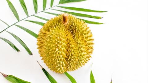首批马来西亚冷冻带壳榴莲从上海口岸入境