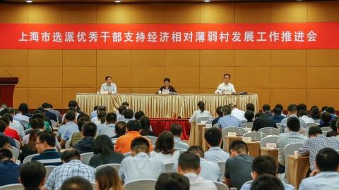"""驻村""""指导员""""助力乡村振兴  上海选派优秀干部到527个经济相对薄弱村"""