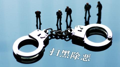 深挖涉黑恶线索 上海市司法局扎实推进扫黑除恶专项斗争