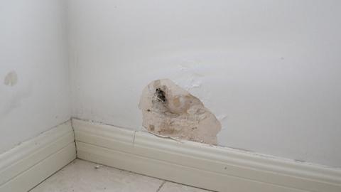 新闻追踪 房屋漏水有了解决方案 物业人员上门展开维修