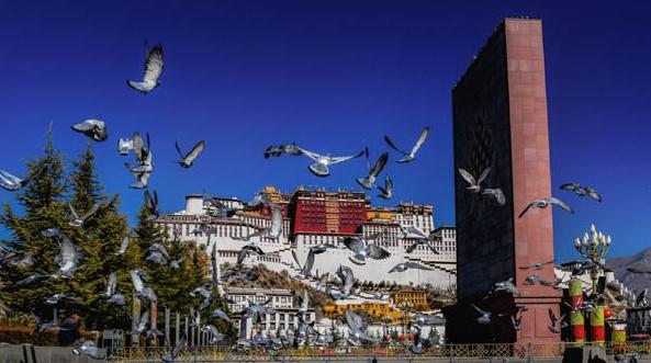 十日谈 | 我与西藏之缘