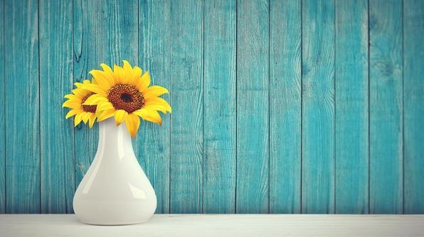 梵高的《向日葵》