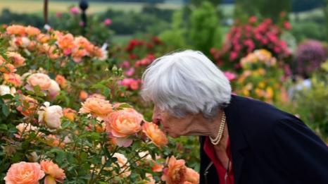 最新调查:德国女性养老金远少于男性