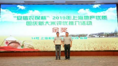 """上海地产优质国庆新大米评优结果出炉:""""松林""""大米获金奖"""