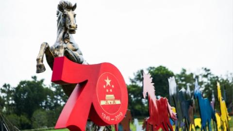 闵行区政协举办庆祝新中国成立70周年暨人民政协成立70周年系列活动