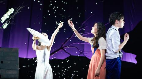 春风解风情 吹动少年心 中国制作音乐剧《春之觉醒》拨动观众心弦