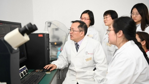 同济专家揭结核菌感染致病奥秘 为新型抗结核药物开发提供更精准靶点