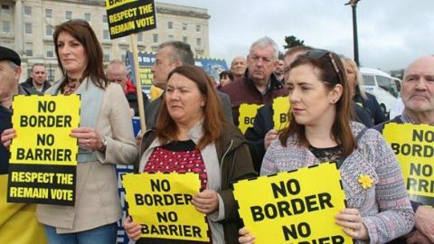 爱尔兰解散众议院下月提前举行大选