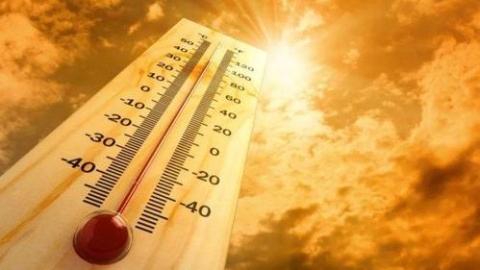 2019年成为有气象记录以来第二热