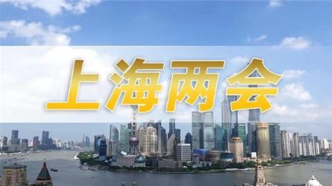 上海市人大代表彭岚:尽快出台上海独生子女护理假
