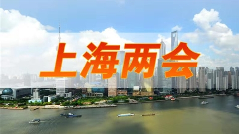 两会声音丨上海市人大代表杨志刚:对标国际文化大都市继续追赶