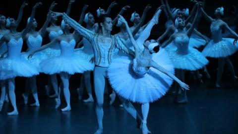 优雅东方天鹅惊艳纽约观众 上海芭蕾舞团经典版《天鹅湖》今亮相林肯中心