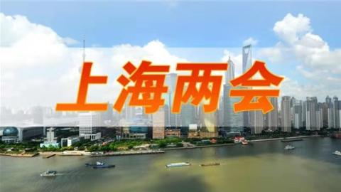 两会声音|上海市人大代表蔡金萍:传播中华文化 深化沪港交流
