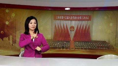 """""""画中画""""连续8年,手语翻译成上海两会电视直播 """"标配"""""""