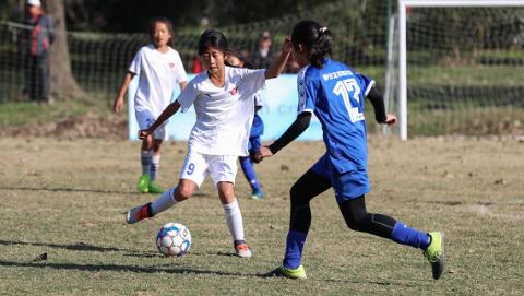 快乐共享绿茵梦想,上海市青少年足球俱乐部联赛开幕