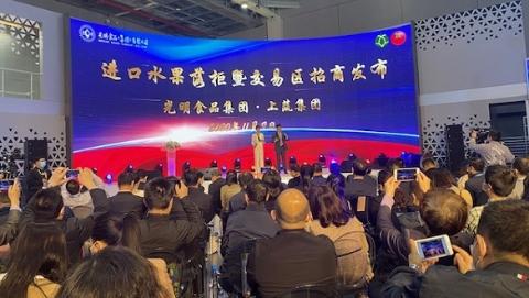 上海蔬菜集团在进博会上签下3.5亿元智利水果,还要推动进口水果落柜交易