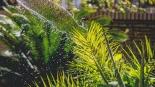 12月这一天起,奥克兰夏季用水限制放宽