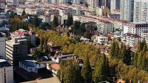 朦胧诗人顾城生活过的街区 正在以你看不见的速度逆生长