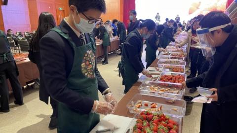 红颜、申琪、淡雪、雪兔……上海草莓正当季!这些品种你见过吗?