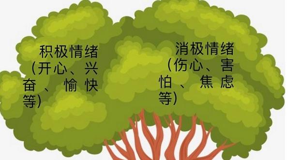 编辑解读:上海中小学 《寒假生活(补充版)》会有什么内容?