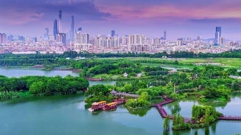 广州海珠:举目之处,皆是花色