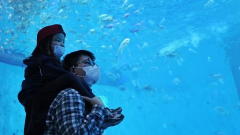 """上海多家主题乐园今恢复开园 热门项目采用""""虚拟排位"""""""