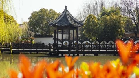 """吴根越角 荷池村:有春秋的水、唐宋的镇、明清的建筑、现代的人   或成""""西塘之心"""""""