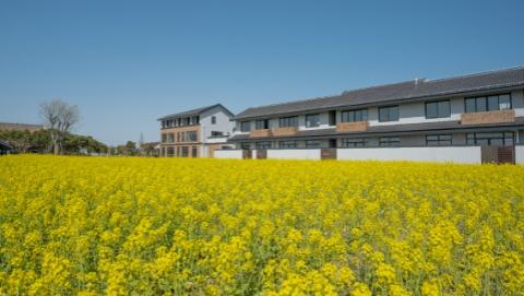 把景观最好的空间拿出来给农民住,金山漕泾水库村村民平移相对集中居住抽签选房