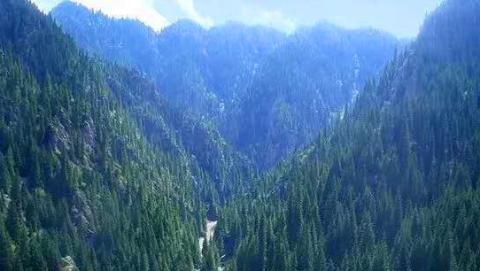 天山大峡谷四季如画
