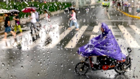 """车子进水会怎样?汛期到,上海的新能源公交""""防水""""攻略,了解一下"""