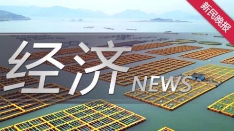 聚焦在线新经济 云上的日子很文青!@上海人,海量文化消费已在线