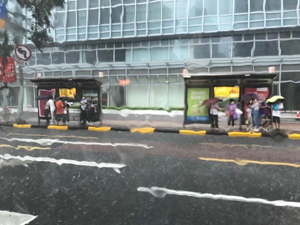 在公交站候车的路人们.jpg