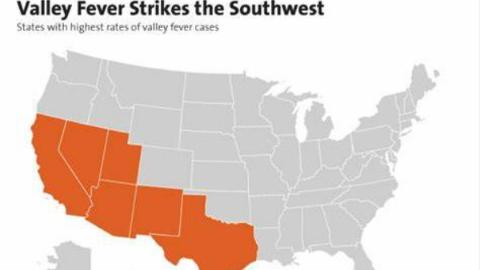 """美国亚利桑那州三名中国公民感染""""山谷热"""" 我领馆发布提醒积极预防、及时治疗"""