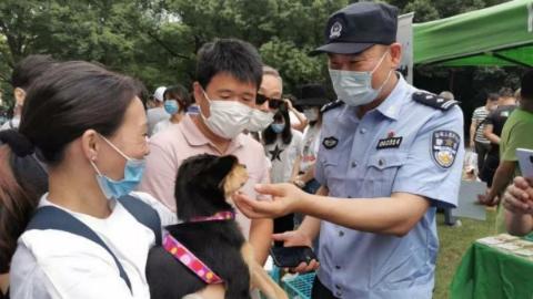 """上海警方对违法养犬开启""""现场执法"""" 模式,2个月开出870余张罚单"""