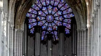 法国巴黎圣母院将清除管风琴上铅尘