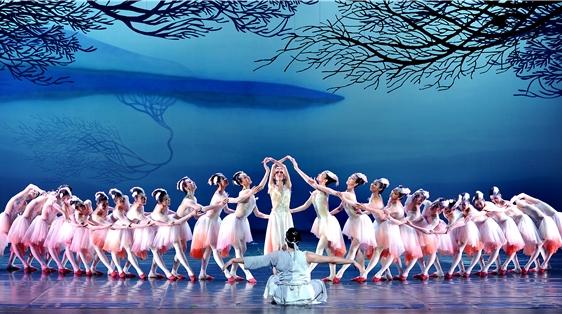 """《朱鹮》明晚再""""振翅"""",这部""""爆款""""舞剧上演超过250场的背后……"""