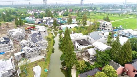 企业来了,高校来了,首席创新官也来了……青浦区这个镇热闹了!