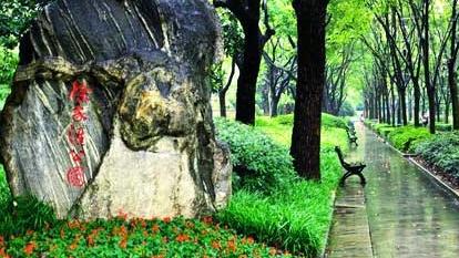 刘海生:徐家汇公园是如何规划的