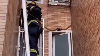 """大蛇反复""""游走""""阳台吓坏居民 消防队员化险为夷"""