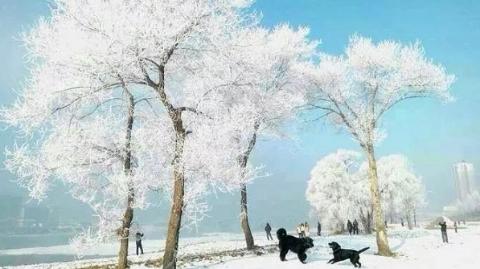 冬季来宁波观雾凇泡温汤