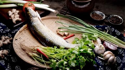 上海人的江鱼
