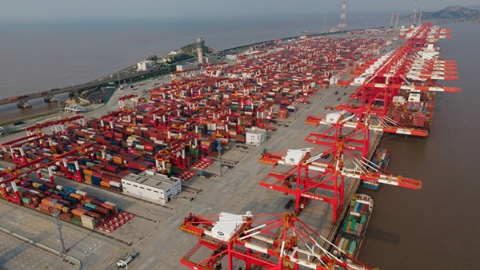 """宛如寒冬中绽放的""""白玉兰""""!上海港集装箱吞吐量连续11年蝉联世界第一"""