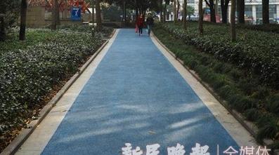 申动丨徐家汇公园健身步道里的秘密,你都知道吗?