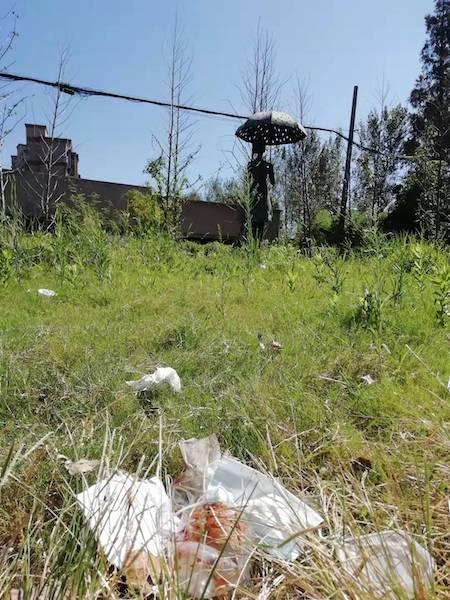 雕塑前的绿地内滋生了大量垃圾.jpg