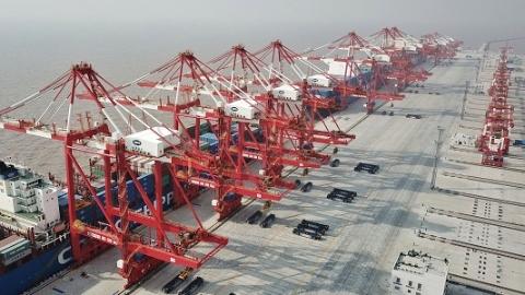 """旧改、老字号、智慧港口、公益林……上海国资国企是经济发展""""力量担当"""""""