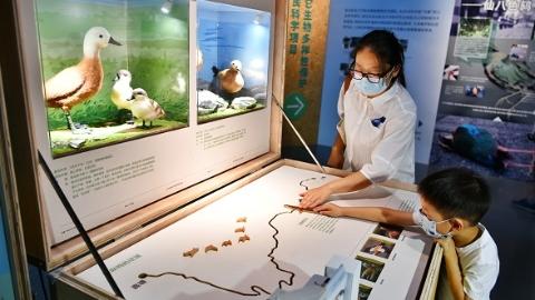 第七届上海国际自然保护周本周末拉开帷幕