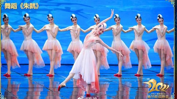 """此美只应天上有!""""朱鹮""""飞上春晚舞台,宛如一幅流动的画"""