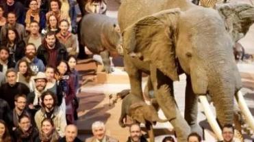法国野生动植物生存状况十余年来持续恶化